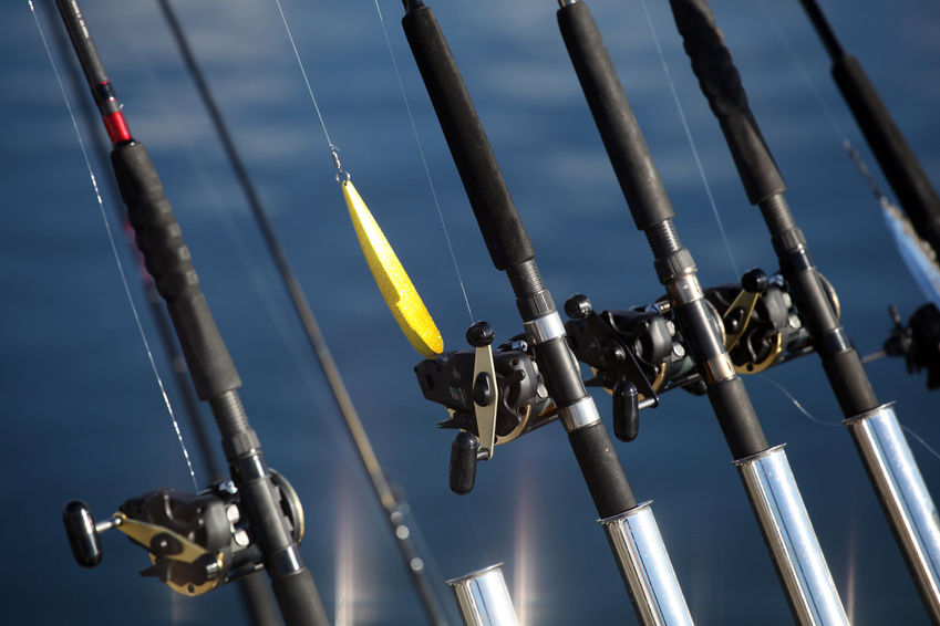Best Spinning Rods Under 50 Our Top 5 Picks Fishin Things